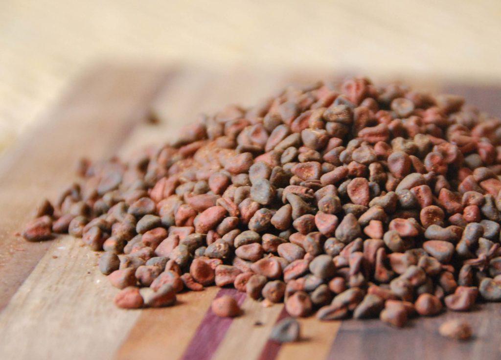 semillas de achiote main