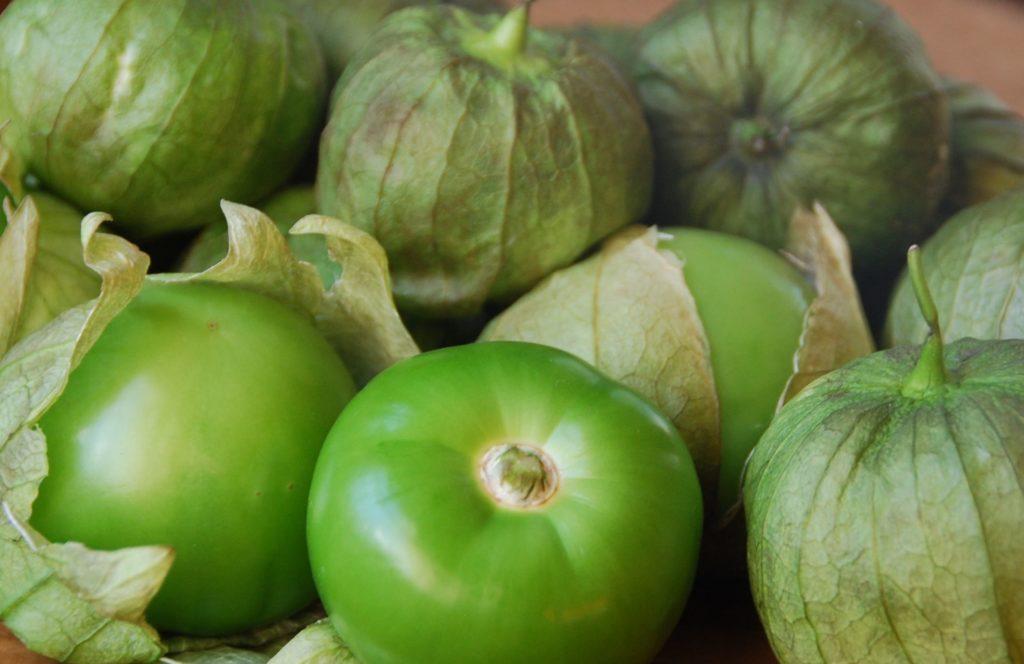 tomates verdes main