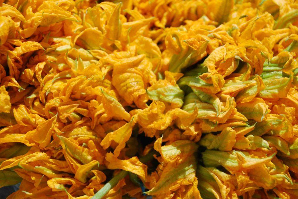 Flores de Calabaza 1