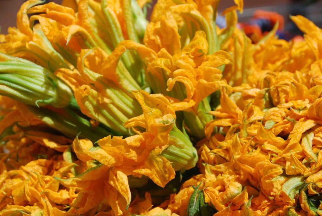 Flores de Calabaza 2