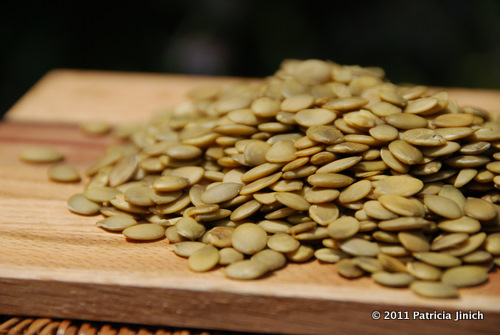 Pumpkin Seeds 4-thumb-510x341-2130