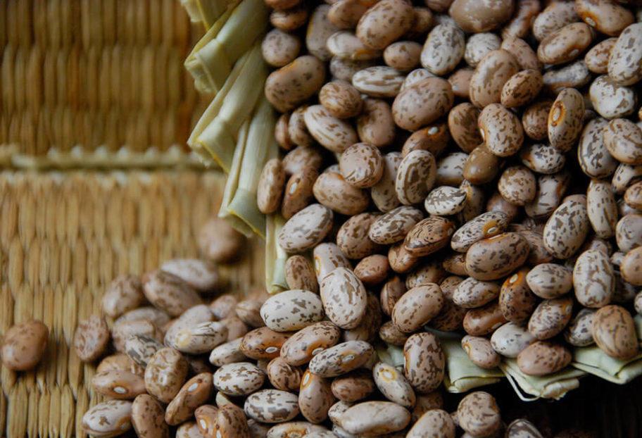 Beans: Pinto Beans