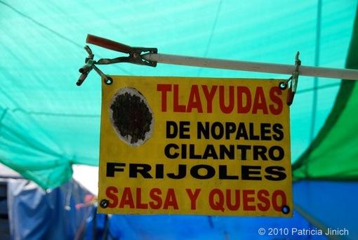 Quesadillas at the Mexico City Fair 22-thumb-510x342-1146