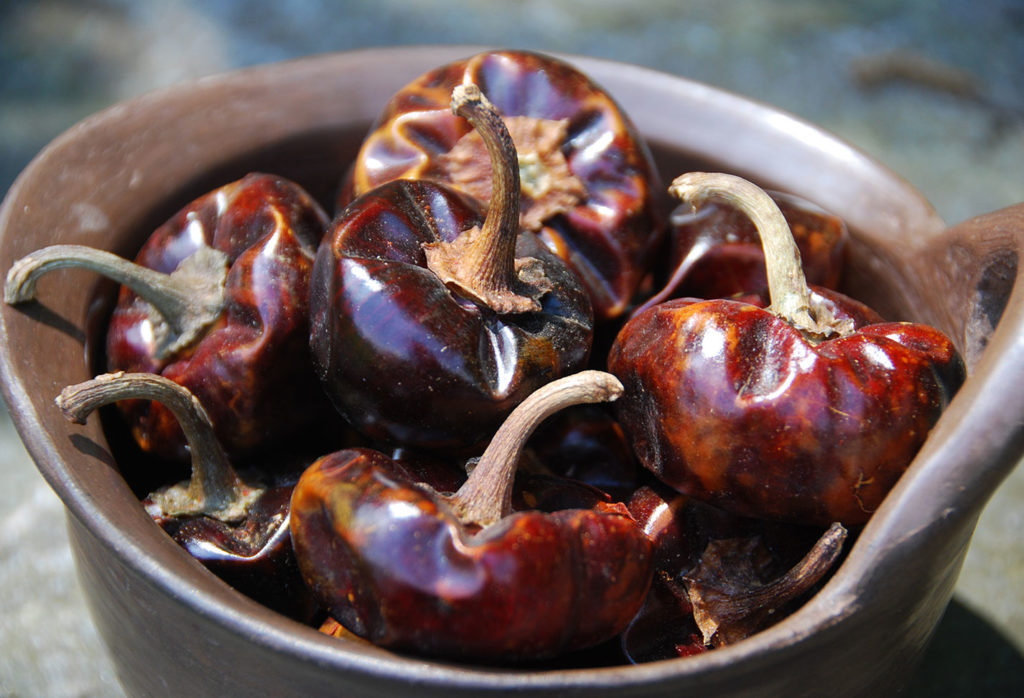 cascabel chile
