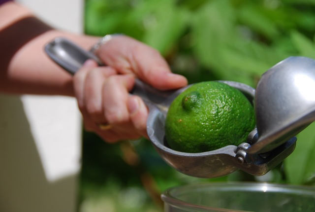 lime squeezer with big Mexican lime ready to squeeze