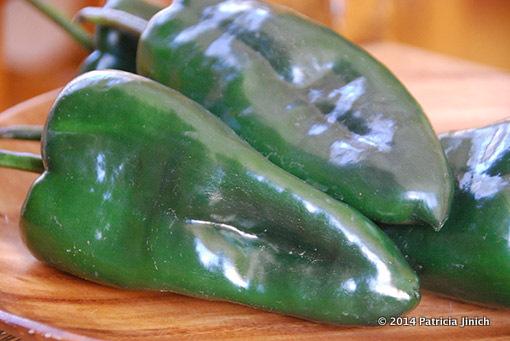 poblano chile